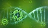 Обнаружено неожиданное свойство коронавируса