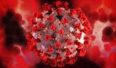 Обнаружено ещё одно опасное последствие коронавируса