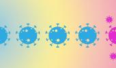 Предсказан вектор мутации коронавируса